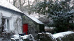 Cottage and trees in snow