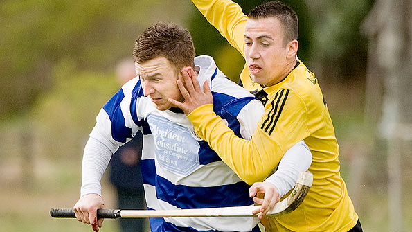 Newtonmore got the better of Fort William in the MacTavish Cup