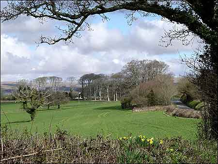 Yealmpton in the Spring