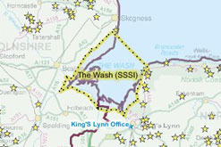 Just one of the UK's SSSI - The Wash
