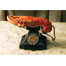 Lobster Telephone 1936
