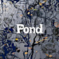 Review of The Pond