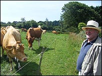 Bill Luff with his cows