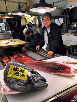 Tuna in fish market