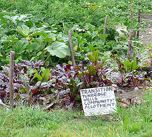 Tunbridge Wells Transition Town allotment sign