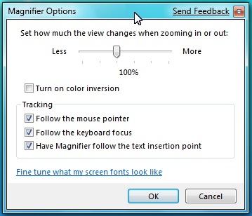 'Magnifier Options' window in full-screen mode
