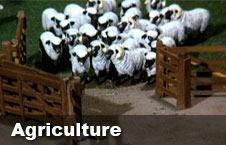 Watch 'Agriculture' videos