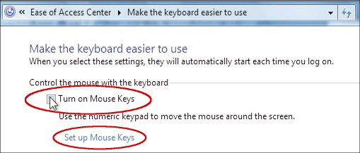 Detail from 'Make the keyboard easier to use' window