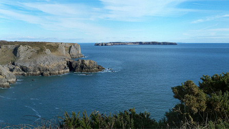 Caldey Island by Tracey Cole