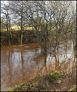 A higher-than-normal River Esk