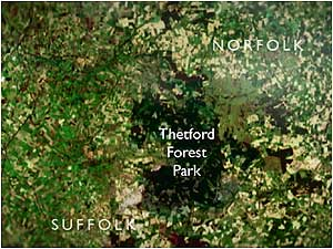 Thetford Forest map