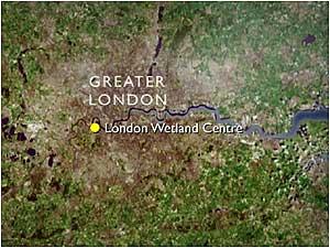 Centre London Map.Bbc Nature S Calendar