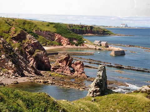 Colour view looking down from cliffs to small harbour with buildings at Cove. Torness Power Station can be seen in the distance.