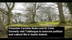 County Tyrone - from the Normans to the plantation.