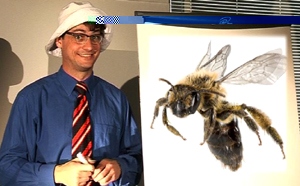 The Teacher and a bee width=