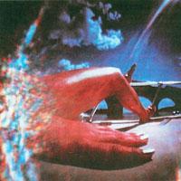 Vinyl Williams - Lemniscate