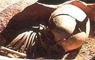 An image of the skeleton of an infant, found in an amphora at Lugnano
