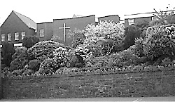 Assumption Grammar  School, Ballynahinch  (1990s)