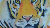 Tiger face- oil...