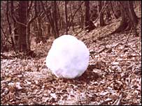 Snowball - Andy Goldsworthy