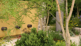 The award winning Daily Telegraph Garden at Chelsea Flower Show 2011
