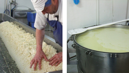 Curds and whey