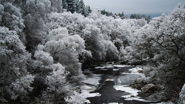 snow filled river and forest (pic courtesy of Alastair Smith)