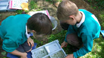 Two schoolchildren examining wildlife