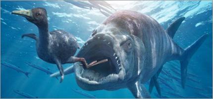 Bbc Science Nature Deadliest Seas