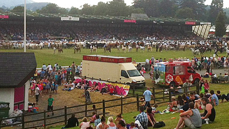 Main show ring at the Royal Welsh Show