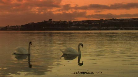 Pembroke Dock at Sunset