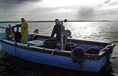 go fish dating northern ireland