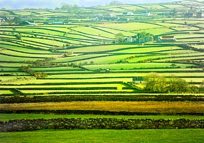Green Fields and Dry Stone Walls - Annalong
