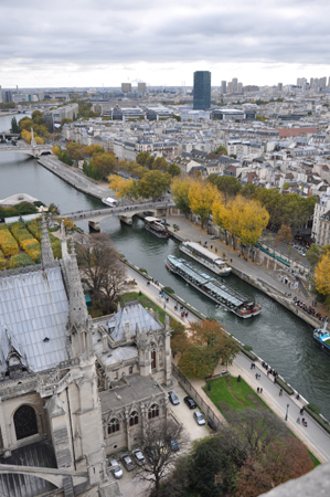View of Paris and the river