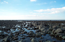 A 'gored' or fishtrap between Aberarth and Aberaeron, once owned by Gwyddno Garanhir?