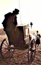 Horse and cab containing chartist petition