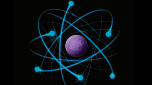 Atomic, Nuclear and Particle Physics