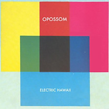 Review of Electric Hawaii