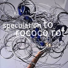 Review of Speculation