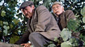 Compo and Clegg in Last of the Summer Wine
