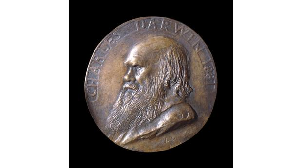Cast bronze medal of Charles Darwin by Alphonse Legros,  from 1881. Copyright Trustees of the British Museum