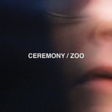 Review of Zoo