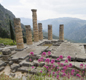 The Temple of Apollo at Delphi.  People from all over the ancient world came to Delphi, to ask questions at the Oracle.