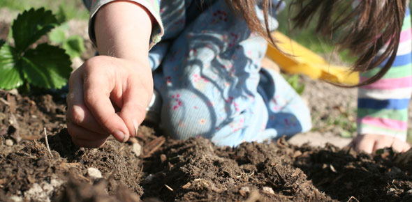 child sowing a seed