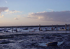 Blackwater Estuary