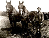 Image of farm lad with horses and plough