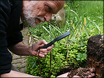 Martin Woolmer looks for woodlice