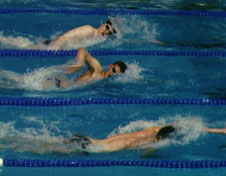 Three freestyle swimmers competing