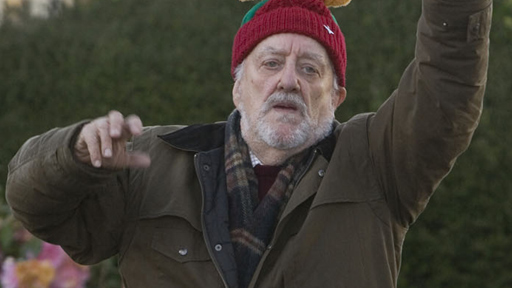 Day Twenty Seven! Cribbins at Christmas!