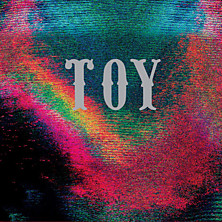 Review of TOY